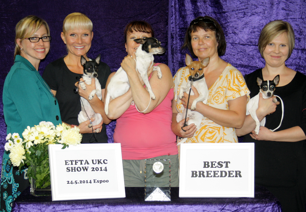 Best Breeder 2014 Toy Fox Terrier Kennels